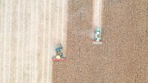Thumbnail for Aerial Shot of Combines Gathering Corn Crop. Drone Tracking Harvesters Riding Through Field Cutting
