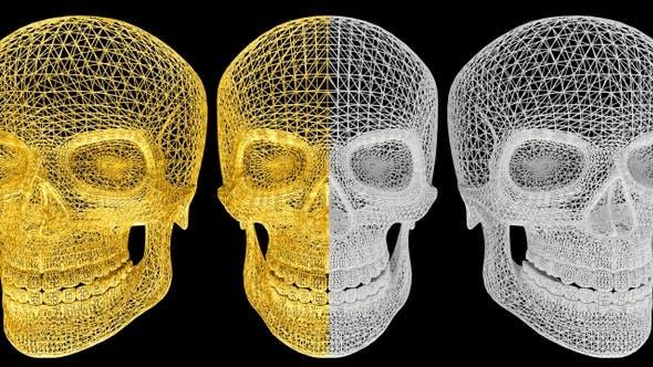 Thumbnail for Gold White Skull - 2 Pack