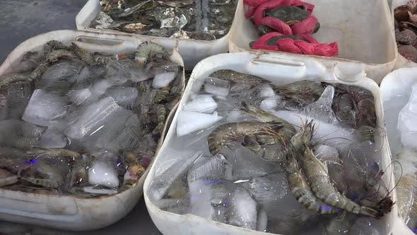 Thumbnail for Sea Food Market 3