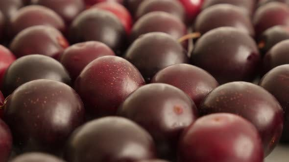 Thumbnail for Many pieces of Prunus cerasifera organic fruit on table 4K 2160p 30fps UltraHD footage - Tilting on
