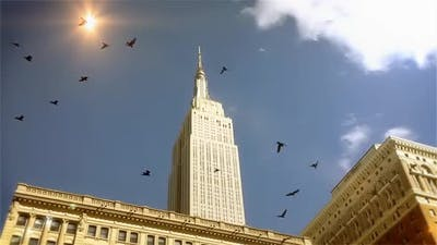 Empire State Building and Flock of Birds Flying.