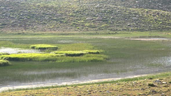 Thumbnail for A Mountain Lake With Marsh, Swamp and Wetland