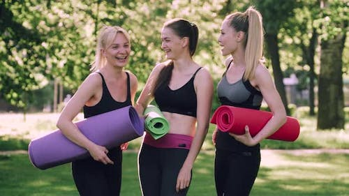 Group of Women Doing Sports Outdoors.