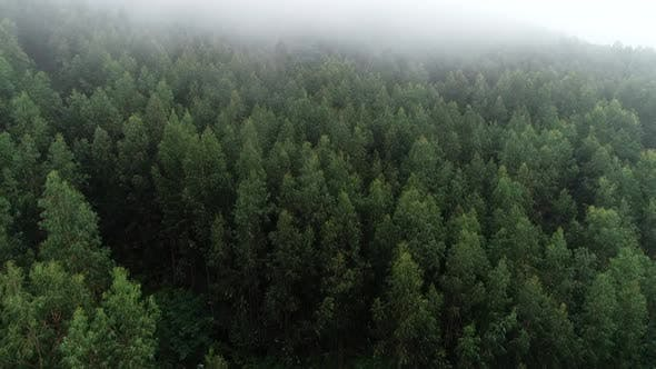 Thumbnail for Dramatic Weather in the Mountains After Rain. Fog in the Mountains, Aerial View