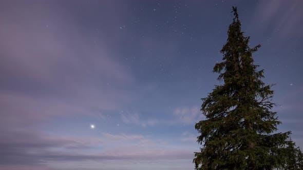 Thumbnail for Misty Sky in Moonlight