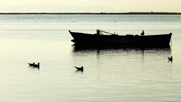 Thumbnail for Fishing Boat And Seagulls In Calm Sea 1