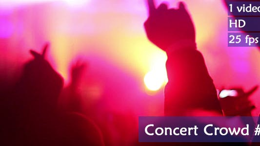 Thumbnail for Concert Crowd