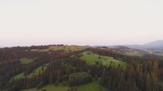 Thumbnail for Scenic Agricultural Field and Forest Against Sky