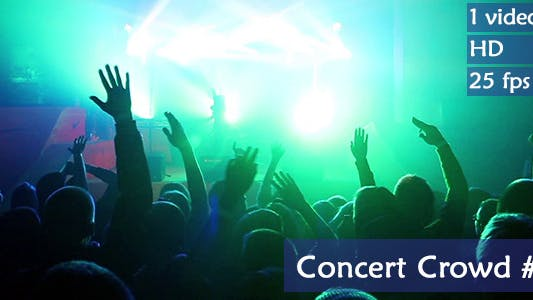 Thumbnail for Concert Crowd 2