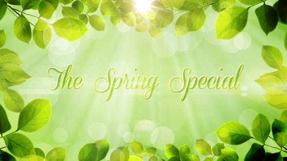 Thumbnail for The Spring Special - Promo Pack