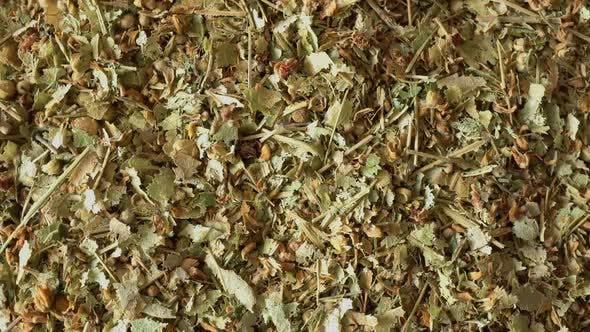 Thumbnail for Rotation Medicinal Herbs Linden