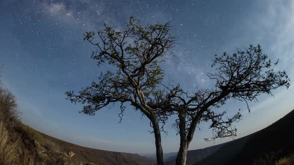 Desert Night Time Lapse