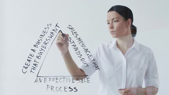 Businesswoman Drawing Business Plan
