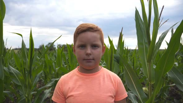 Thumbnail for Portrait of Young Serious Red-haired Boy Looking Into Camera Against the Background of Corn Field