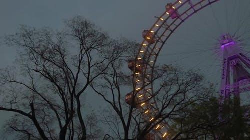 Giant Ferris Wheel in the Evening. Vienna, Austria