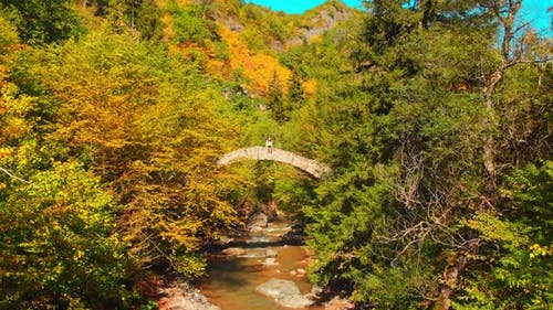 Woman Sits On Old Bridge And Enjoys Autumn Nature Copy