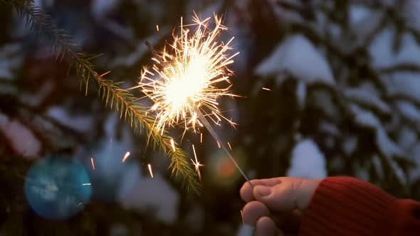 Thumbnail for Burning Sparklers on the Christmas Tree in the Winter Forest