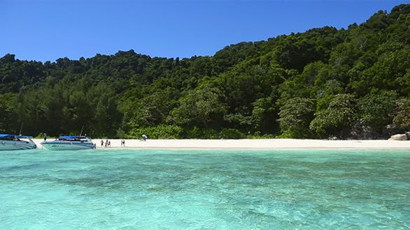 Cover Image for Similan Island Beach
