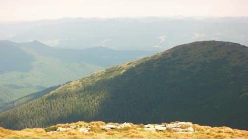 Foggy Morning Scene in the Carpathian Mountains