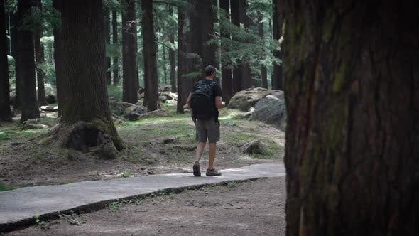 Low Angle Shot of a Young American Guy Walking in Manali Nature's Park