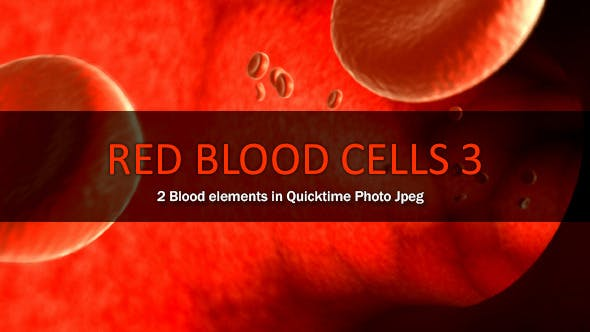 Red Blood Cells 3