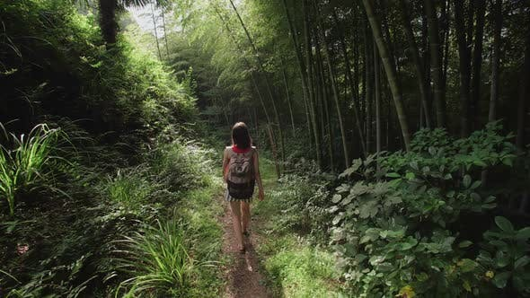 Thumbnail for Travel Woman with Bag Walks Along Path in Tropical Park of Tropical Plants, Palms, Bamboo Plantation