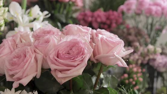 Thumbnail for Beautiful Pink Roses Bunch