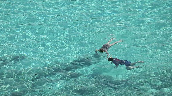 Thumbnail for Snorkeling