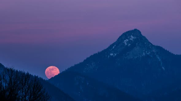 Thumbnail for Red Full Moon Rising over Mountain Forest in Winter Evening Nature