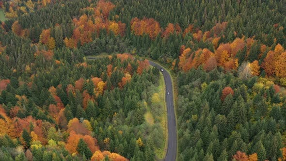 Aerial View Of Mountain Road At The Autumn Forest 3