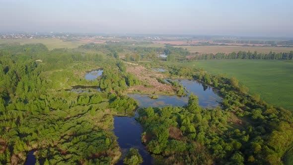 Thumbnail for The Swamp. City Vitebsk.