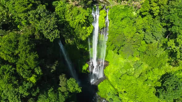 Thumbnail for Waterfall in Green Rainforest