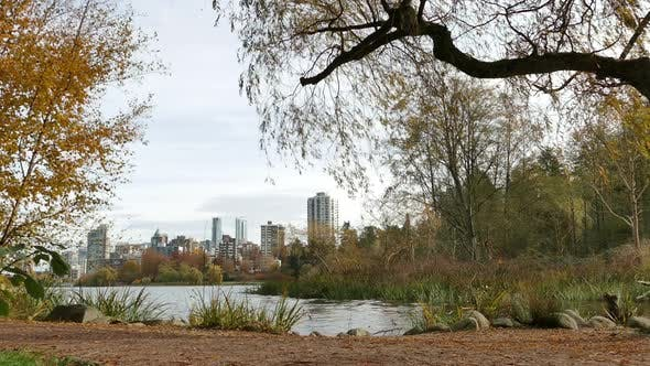 Thumbnail for Vancouver City - Lost Lagoon - Flying Bird