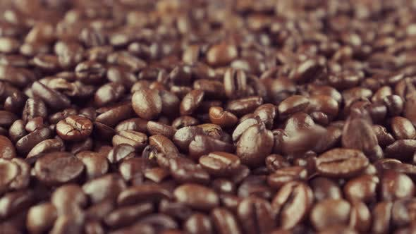Thumbnail for Fragrant Coffee Beans