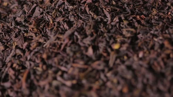 Thumbnail for Black Dried Tea Leaves