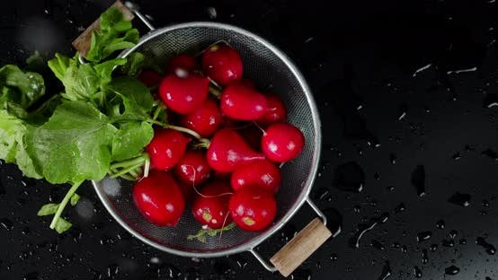 Thumbnail for The Radishes in a Colander Falling Water Drops.