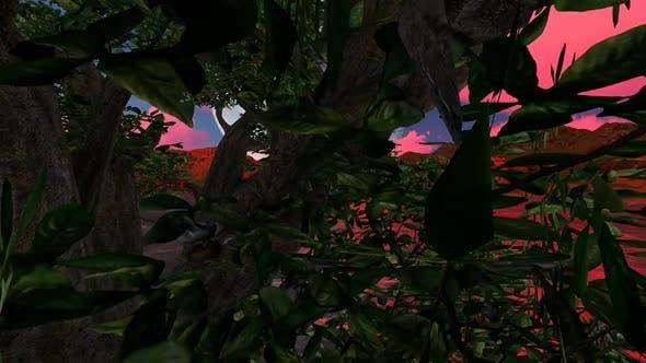 Thumbnail for Licht im Wald