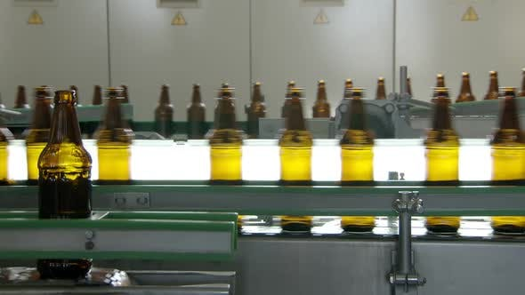 Thumbnail for Technological Line for Bottling of Beer in Brewery, Bottles Are Moving Against Lights