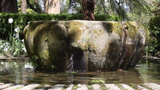 Thumbnail for Park Fountain 04