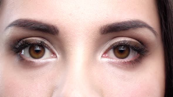 Thumbnail for Two Female Brown Eyes Blink. Close Up. Slow Motion