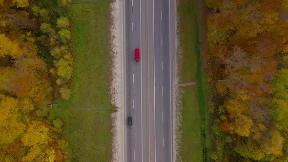 Thumbnail for Top View of Traffic on a Highway Surrounded By Bright Autumn Forest.