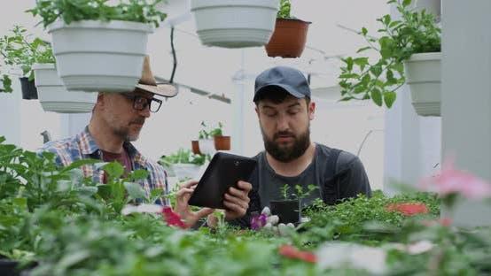 Thumbnail for Gardeners Taking Photo of Pot Plant