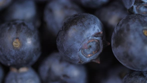 Thumbnail for Close Up Of Blueberries Spinning