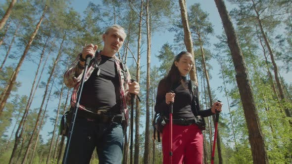 Active Backpackers with Poles Travelling on Forest Trail