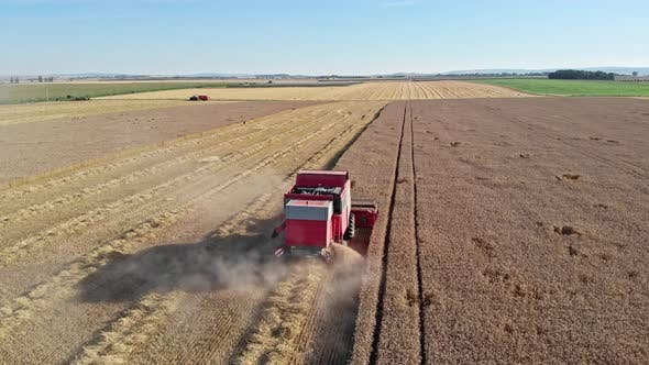 Thumbnail for Aerial Shot Of Combine Harvester Working On Wheat Field