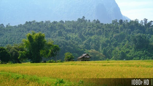 Thumbnail for Old Wooden Barn Shack in the Fields by Mountains