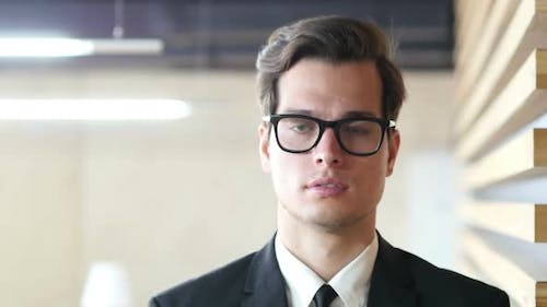 Portrait of Businessman in Glasses in Office