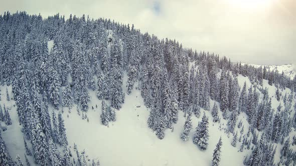 Dreamy Drone Pan Of Snowy Mountain Hills With Thick Forest Trees