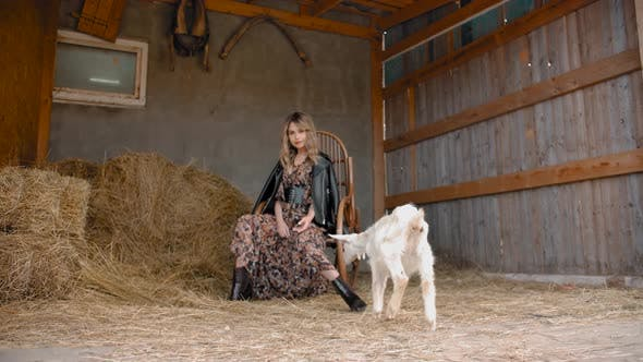 Thumbnail for Stylish Woman and Goat in Barn