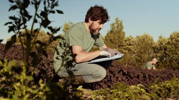 Thumbnail for Portrait of Gardener Writing in Document in Field